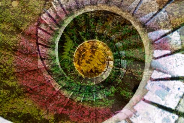 spiral-2rw-8n43.jpg